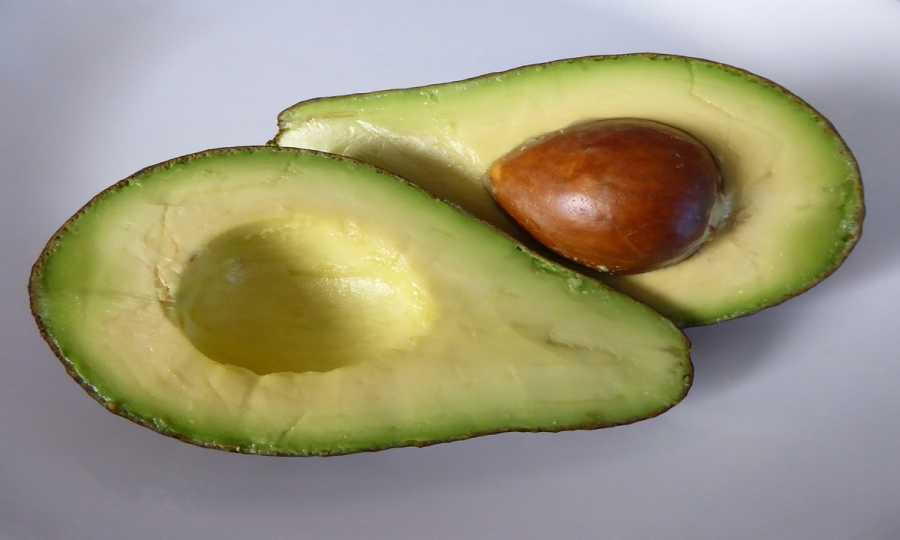 Avocado Nutrition Resourceful Ideas