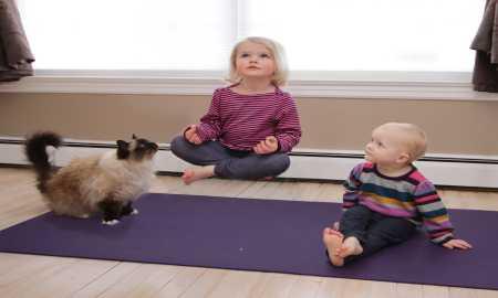 cosmic kids yoga